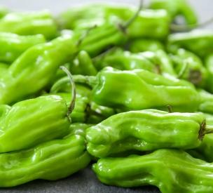 shishito-peppers-28.jpg